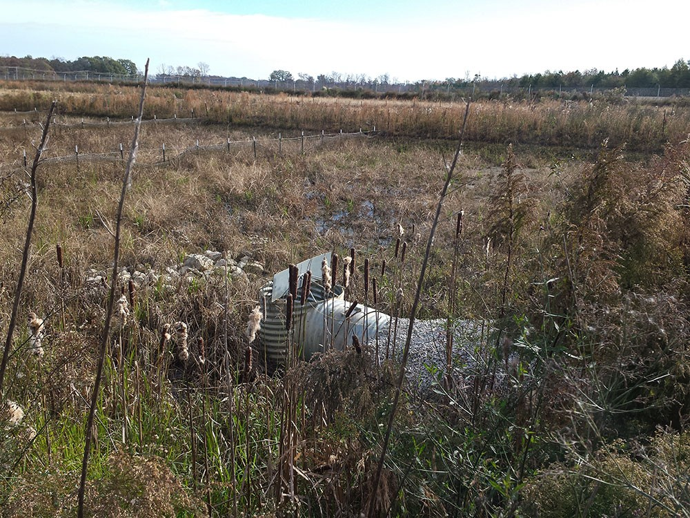 Stormwater Planning and Inspection